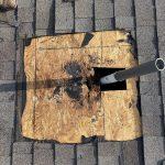 damaged plywood